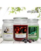 MADE IN USA OLD WILLIAMSBURG Scented Candle 510g / 18oz - Apothecary Jar Case